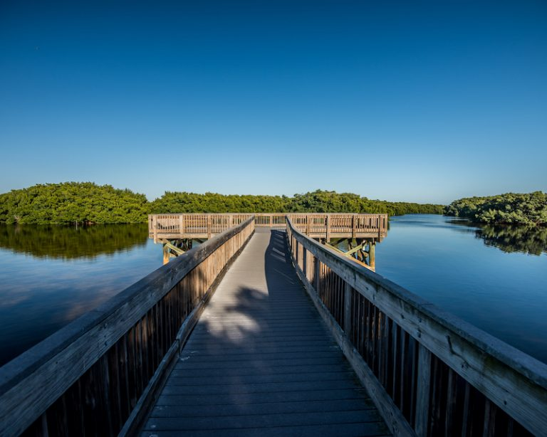Weedon Island Preserve in St. Petersburg, FL | The Ultimate Guide